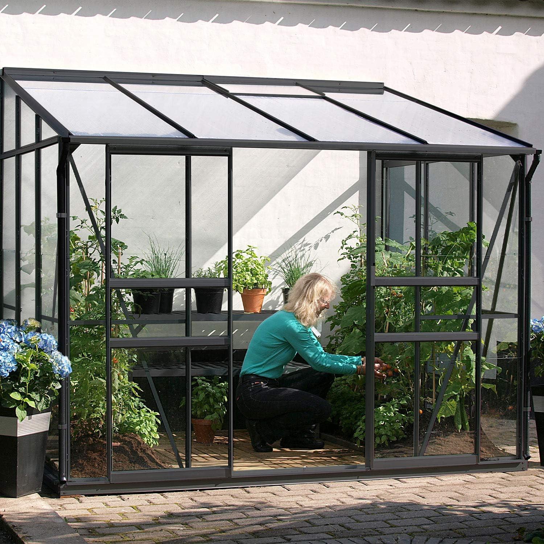 lams – Invernadero de Vidrio Templado 3 mm Adostado Melissa IDA 5, 20 M2 – Antracita: Amazon.es: Jardín