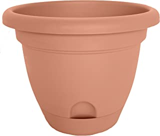 product image for Bloem LP0646-12 Lucca Planter, 6-Inch, Terra Cotta, 12-Pack