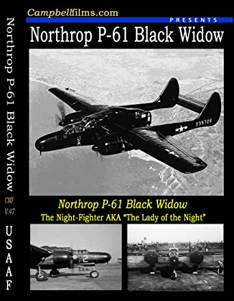 Warbirds Of Wwii Dvd