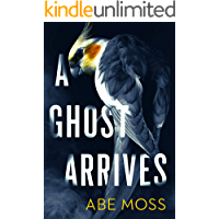 A Ghost Arrives: A Novel book cover