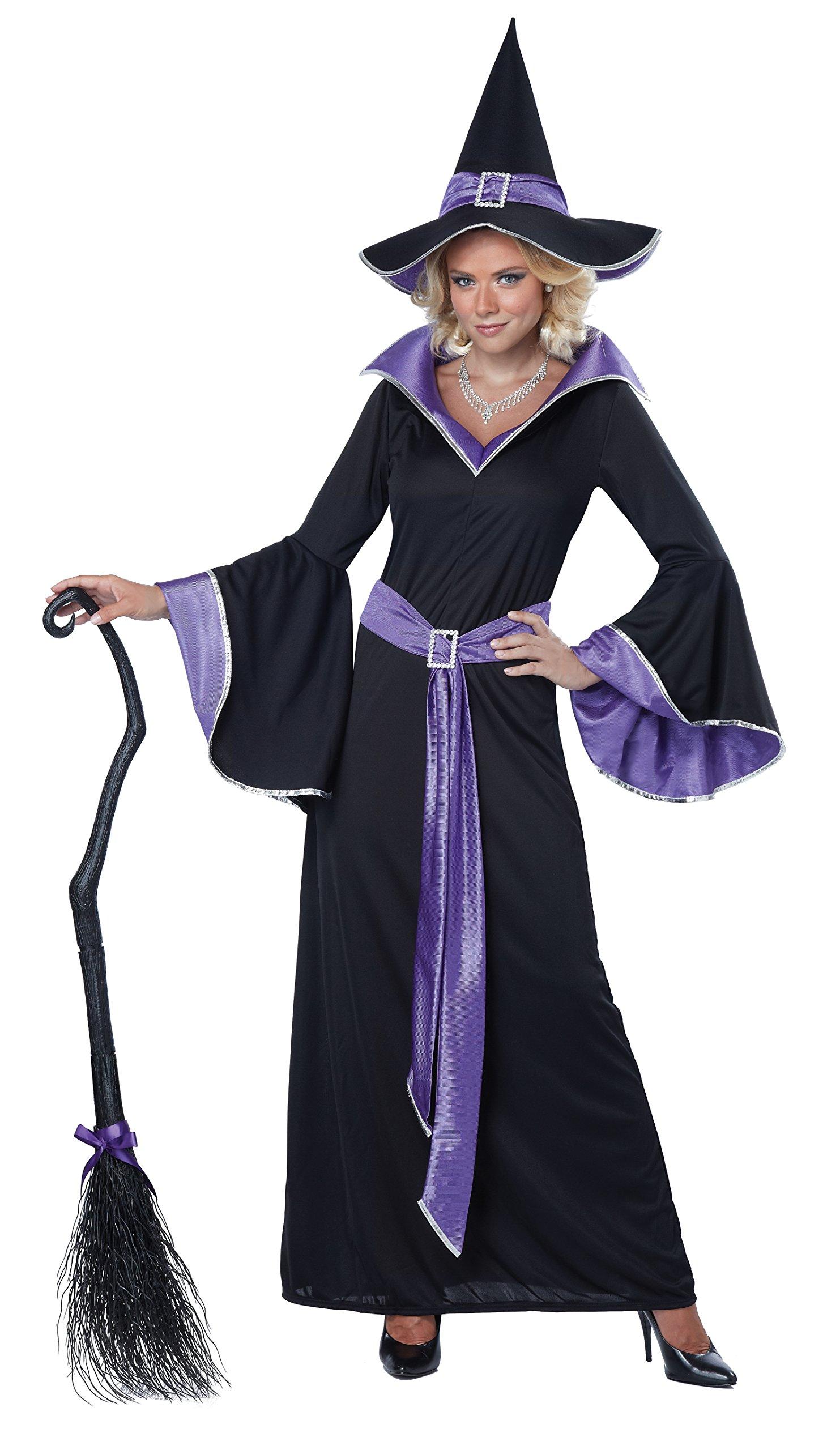 California Costumes Women's Adult Incantasia Witch Costume Broom, Black/Purple, Medium
