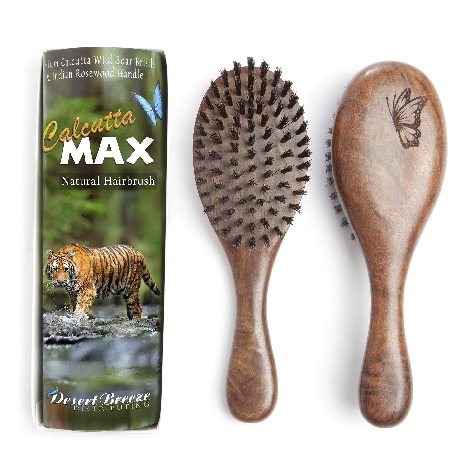 100% Pure Wild Boar Bristle Hair Brush, Calcutta Max for Thick or Long Hair, Gentle, Extra Stiff Natural Bristles, Hand Finished Indian Rosewood Handle, Tufted in USA, by Desert Breeze Distributing by Desert Breeze Distributing (Image #1)