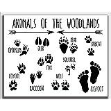 Animals of the Woodland Bigfoot Print, 11 x 14 UNFRAMED Funny Wall Art, Sasquatch Monster, Nursery Decor