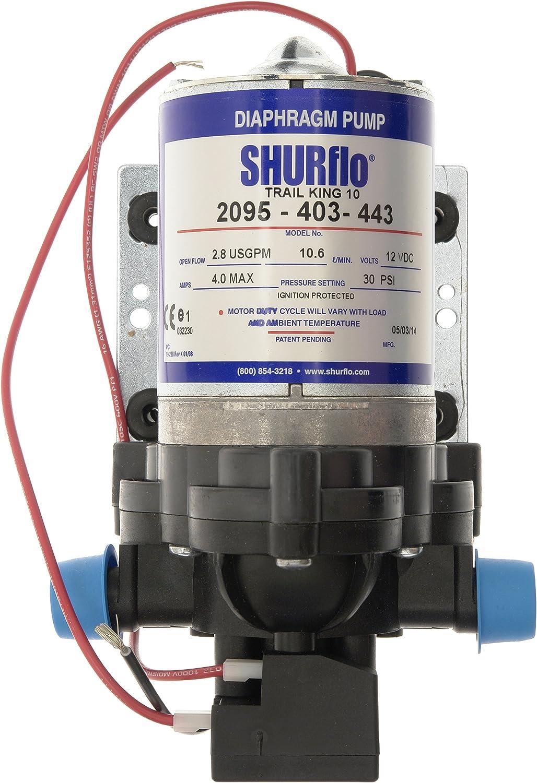 Shurflo 2095-403-443 Bomba de Agua Trail King 10 de Color Gris (12 V/2,07 Bares), Plata, 30 PSI