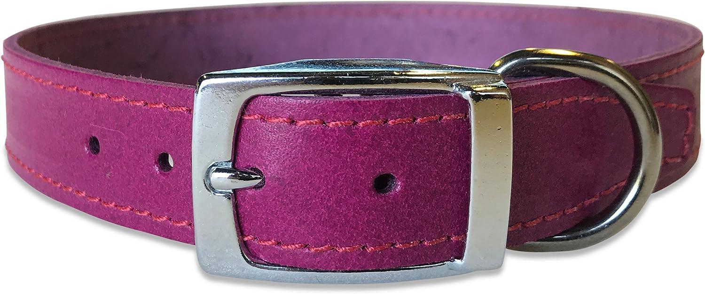 BBD Mascota Productos Plain Piel Collar, 18–21-Inch, Morado