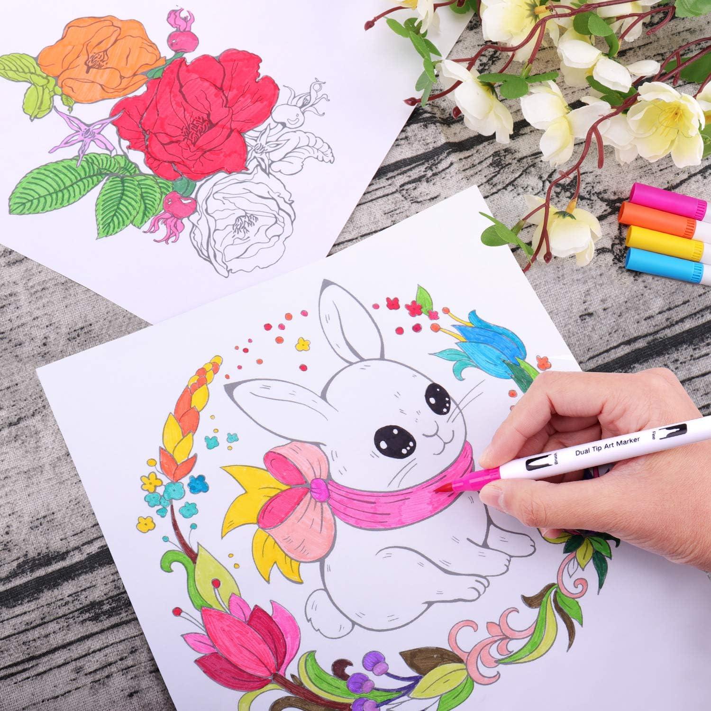 Calligraphie Bullet Journal Pointes de Pinceau 0.4 mm Manga 1-2 mm et Pointes de Feutre Fin 24 Stylo Aquarelle Feutre Coloriage Pinceaux Dual Brush Pen pour Coloriage Adulte