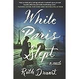 While Paris Slept: A Novel