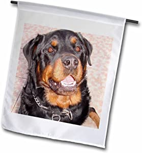 3dRose Dog Rottweiler Male - Garden Flag, 12 by 18