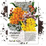 Seed Needs, Autumn Blaze Milkweed Mix (Asclepias species) 100 Seeds
