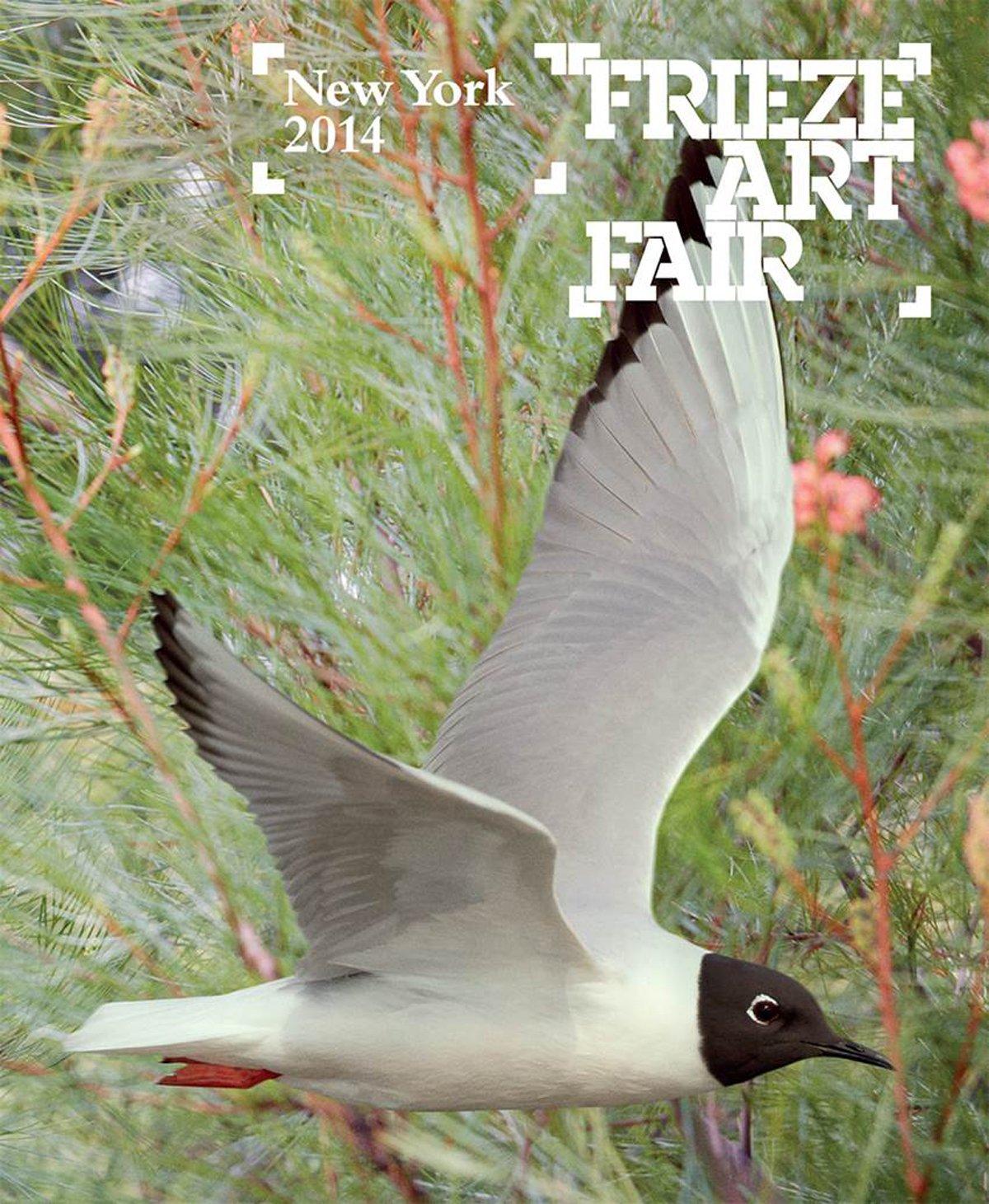 Download Frieze New York 2014 Catalogue (Frieze Art Fair New York) ebook