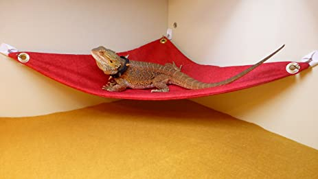 hammock for bearded dragons red crackle fabric with suction cup hooks amazon     hammock for bearded dragons red crackle fabric with      rh   amazon