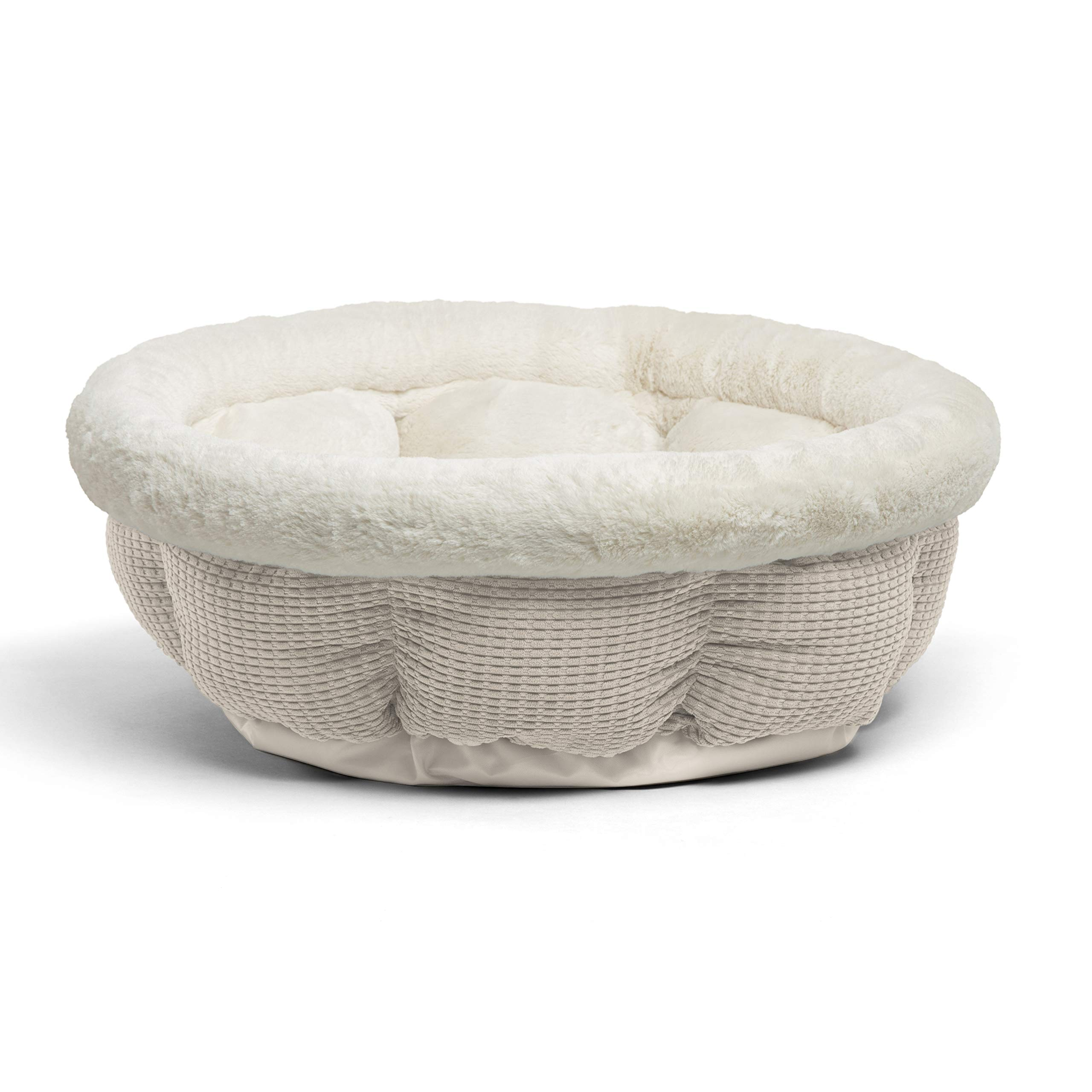 Best Friends by Sheri Jumbo Cup in Mason Dog Bed/Cat Bed