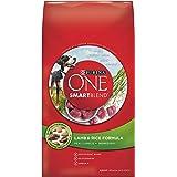 Purina ONE SmartBlend Lamb & Rice Formula Dry Dog Food