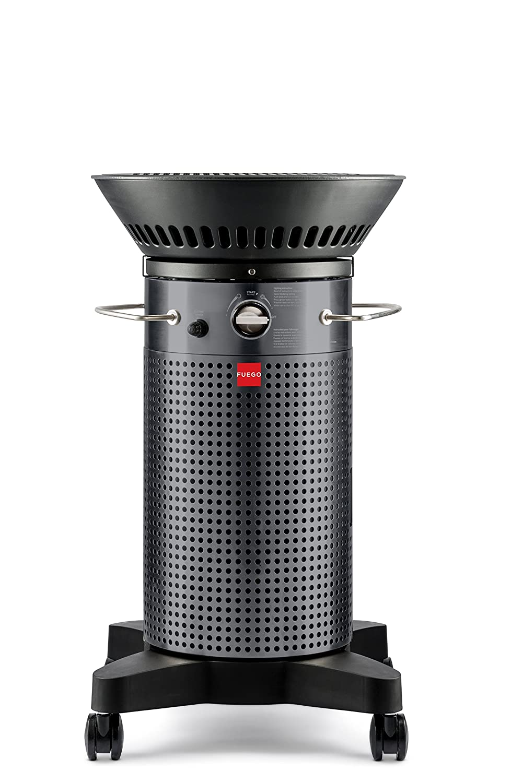Elemento fuego 2016 F21 C modelo Gas Grill, gris: Amazon.es ...
