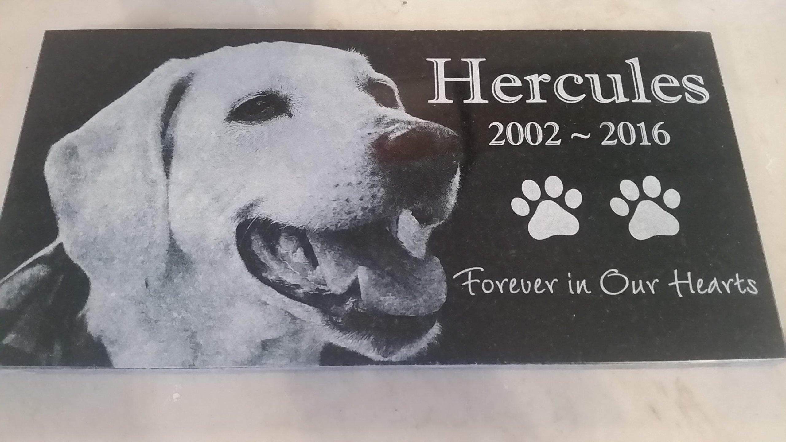 Personalised Pet Stone Memorial Marker Granite Marker Dog Cat Horse Bird Human 6'' X 12'' Retreiver Labrador Golden
