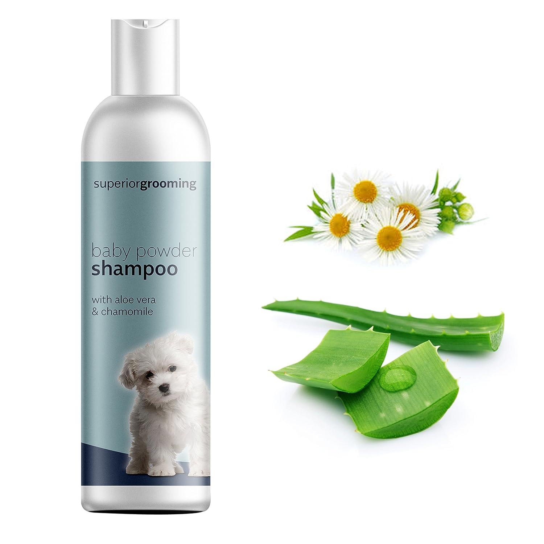Champú para perros con aroma a talco, para profesionales de la peluquería canina Solución concentrada de 250 ml. Ideal para cualquier raza de perro.