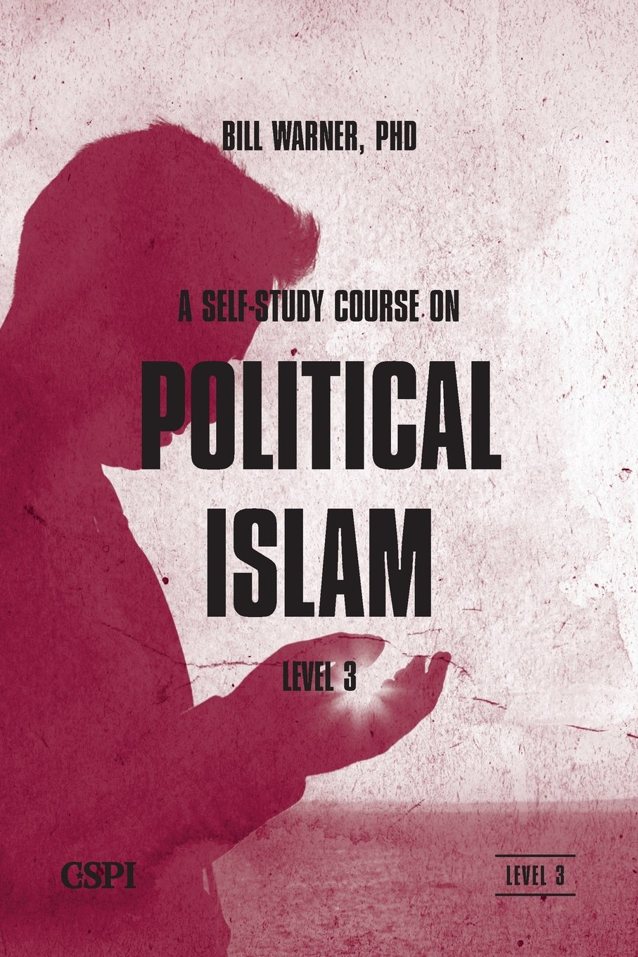 Self Study Course Political Islam Level product image
