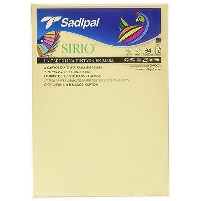 Sadipal 7388 - Pack 10 cartulinas A4, colores pastel: Oficina y papelería