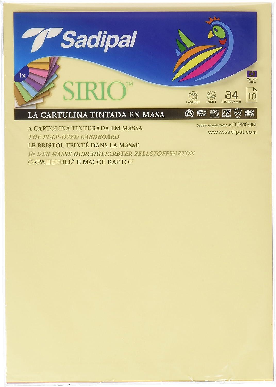 Sadipal 7388 - Pack 10 cartulinas A4, colores pastel: Amazon.es: Oficina y papelería