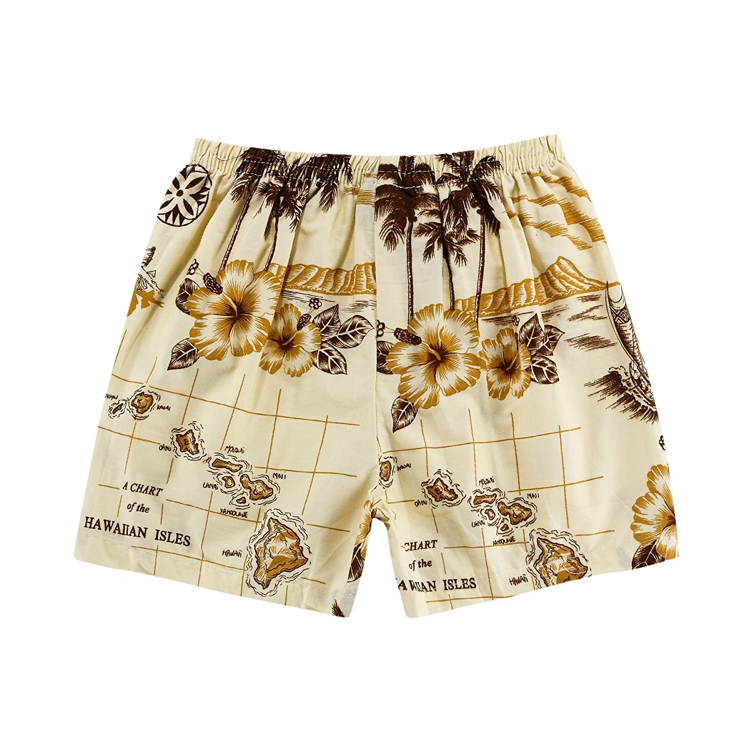 Boy Hawaiian Shirt and Shorts 2 Piece Cabana Set in Tan with Boat and Map