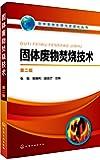 固体废物处理与资源化丛书--固体废物焚烧技术(第二版)