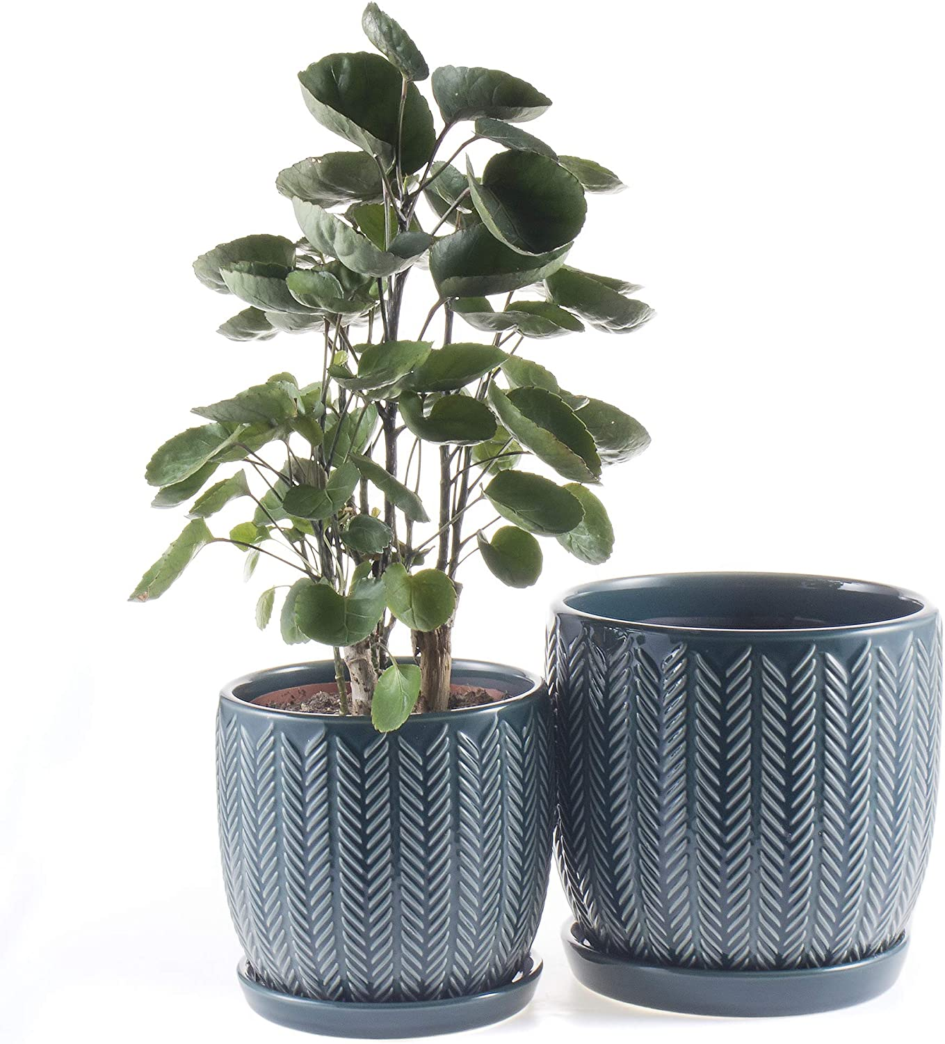 "Voeveca Ceramic Flower Pot Garden Planters 6.5"" and 5.5"" Set of 2 Indoor Outdoor, Modern Nordic Style Plant Containers (Gereen)"