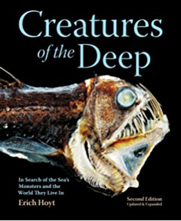 Creatures Of The Deep In Search Seas Monsters And World They Live
