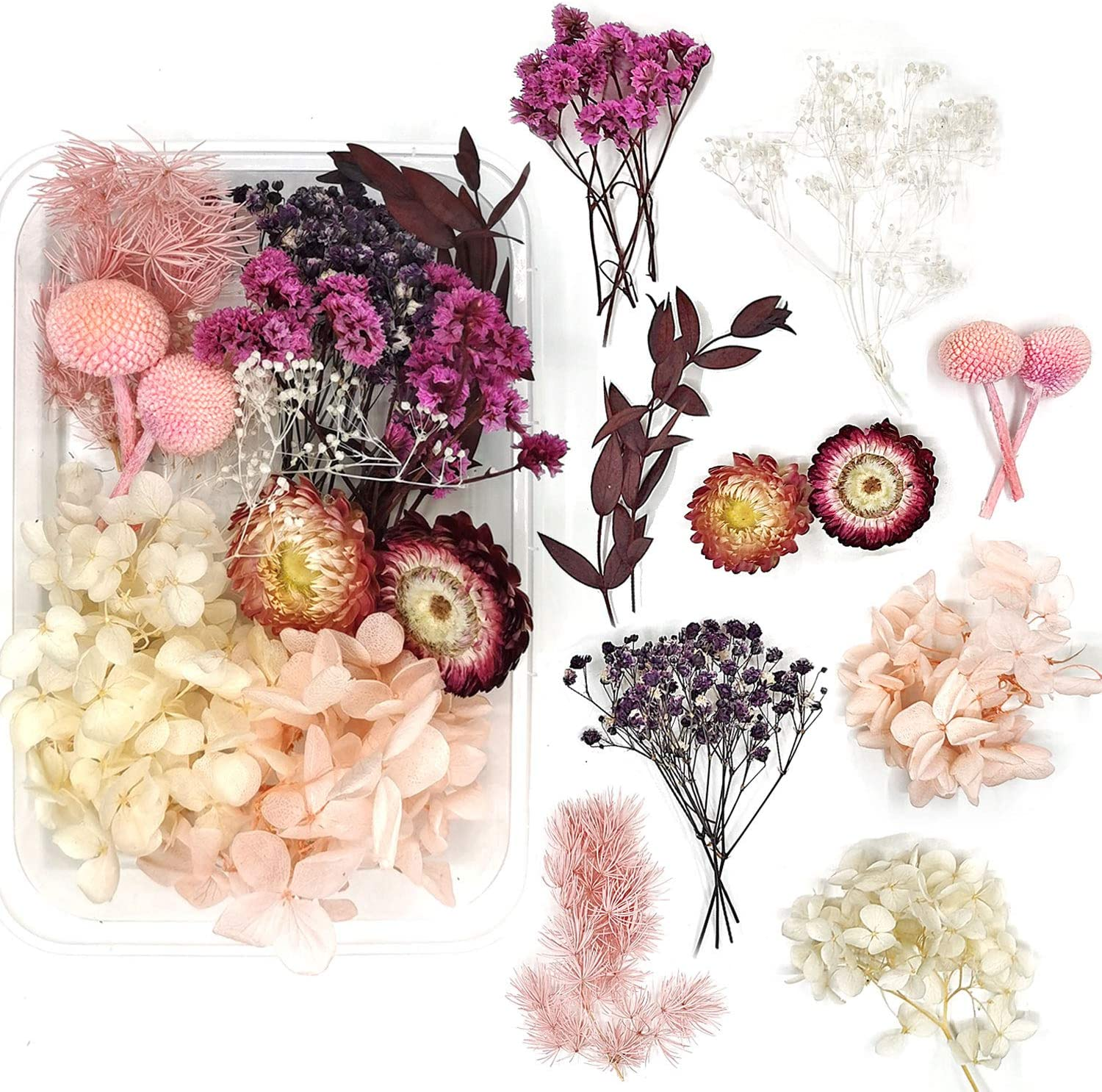 Amazon Com Real Natural Dried Flowers For Art Craft Mixed Multiple Colorful Dried Flowers For Soap Candle Scrapbooking Diy Resin Pink Dried Flowers