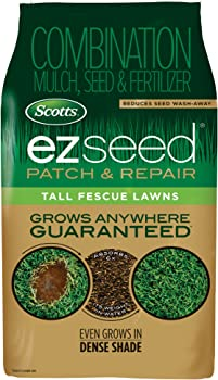 Scotts Turf Builder EZ Seed Tall Fescue 20-lbs. Bag