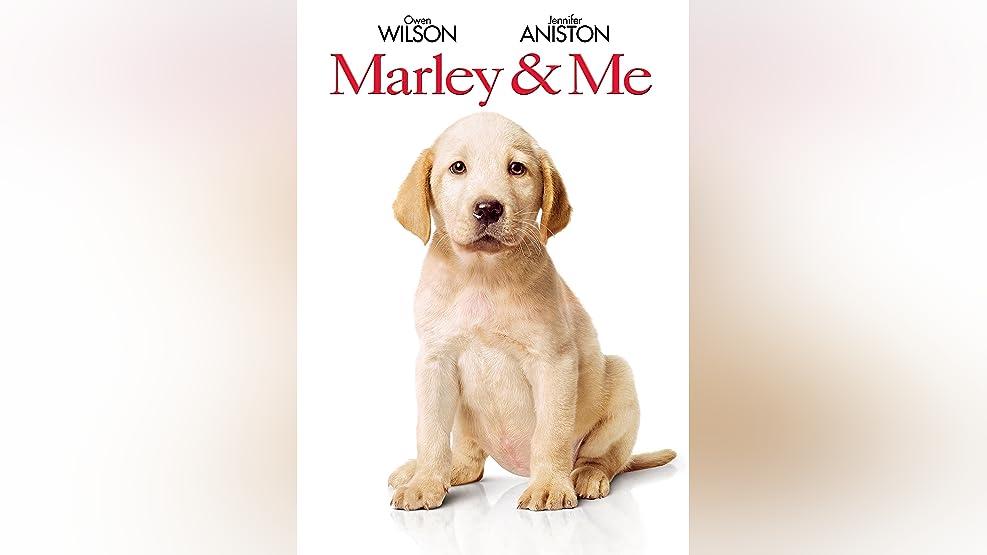 Marley & Me: Life After Film School: David Frankel