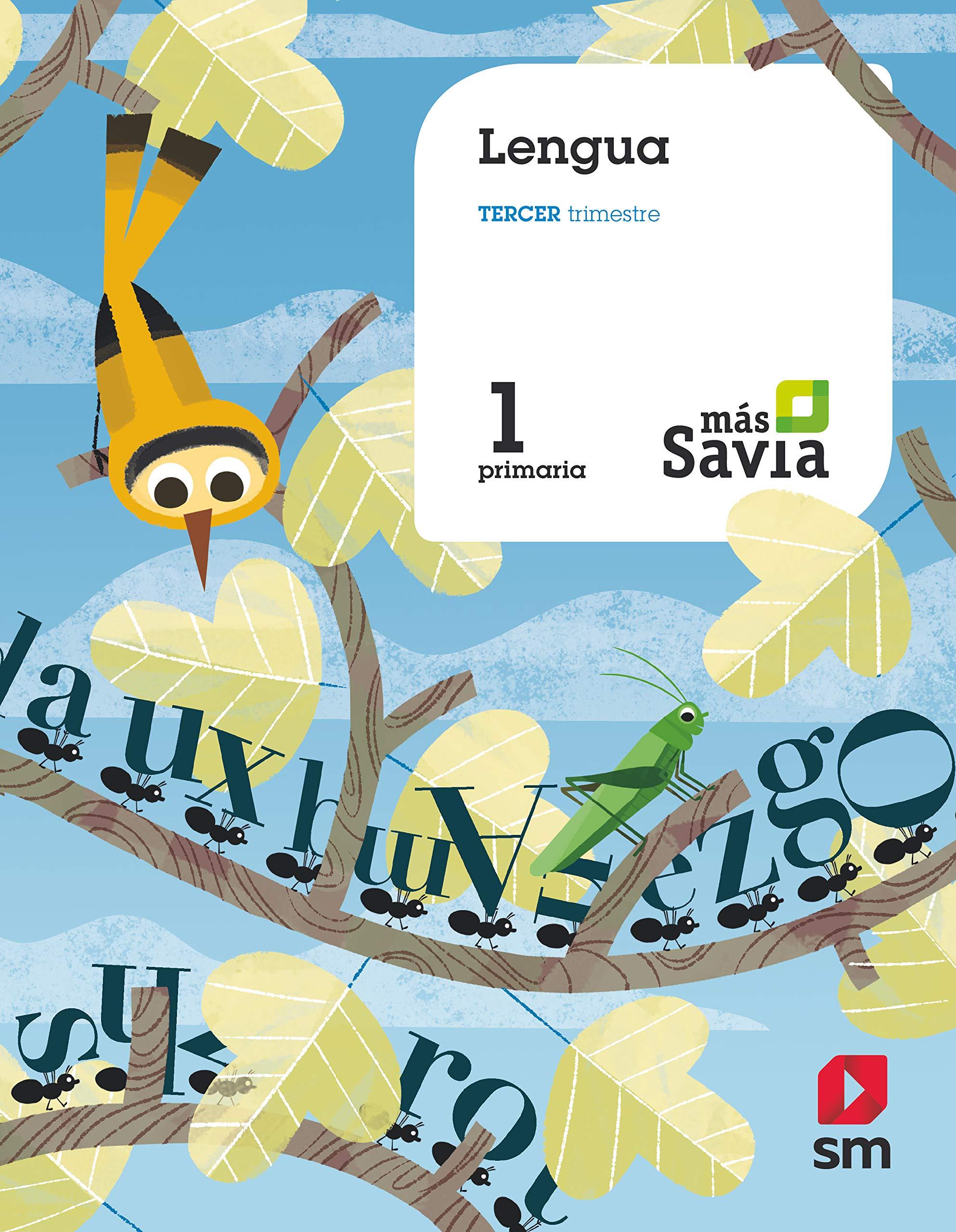 Lengua, Básico. 1 Primaria. Más Savia: Amazon.es: María ...
