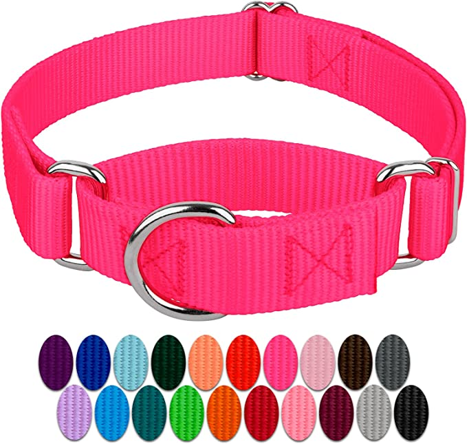 Country Brook Petz Heavy Duty Martingale Collar