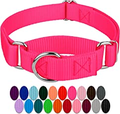 Country Brook Petz | Martingale Heavyduty Nylon Dog Collar