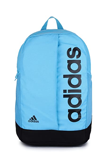 cd351262d2 Adidas 21 Ltrs Sky Blue Bag Organizer (DW4894)  Amazon.in  Bags ...