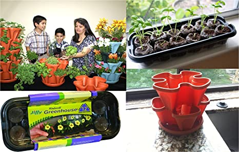 Captivating Mr. Stacky Family Gardening Stacking Planter Kit   Jiffy Windowsill  Greenhouse Seed Starter   12