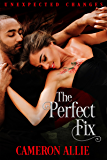 The Perfect Fix (Unexpected Changes Book 3)