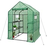 """Deluxe Green House 56"""" W x 56"""" D x 77"""" H,Walk in Outdoor Plant Gardening Greenhouse 2 Tiers 8 Shelves - Window and Anchors In"""