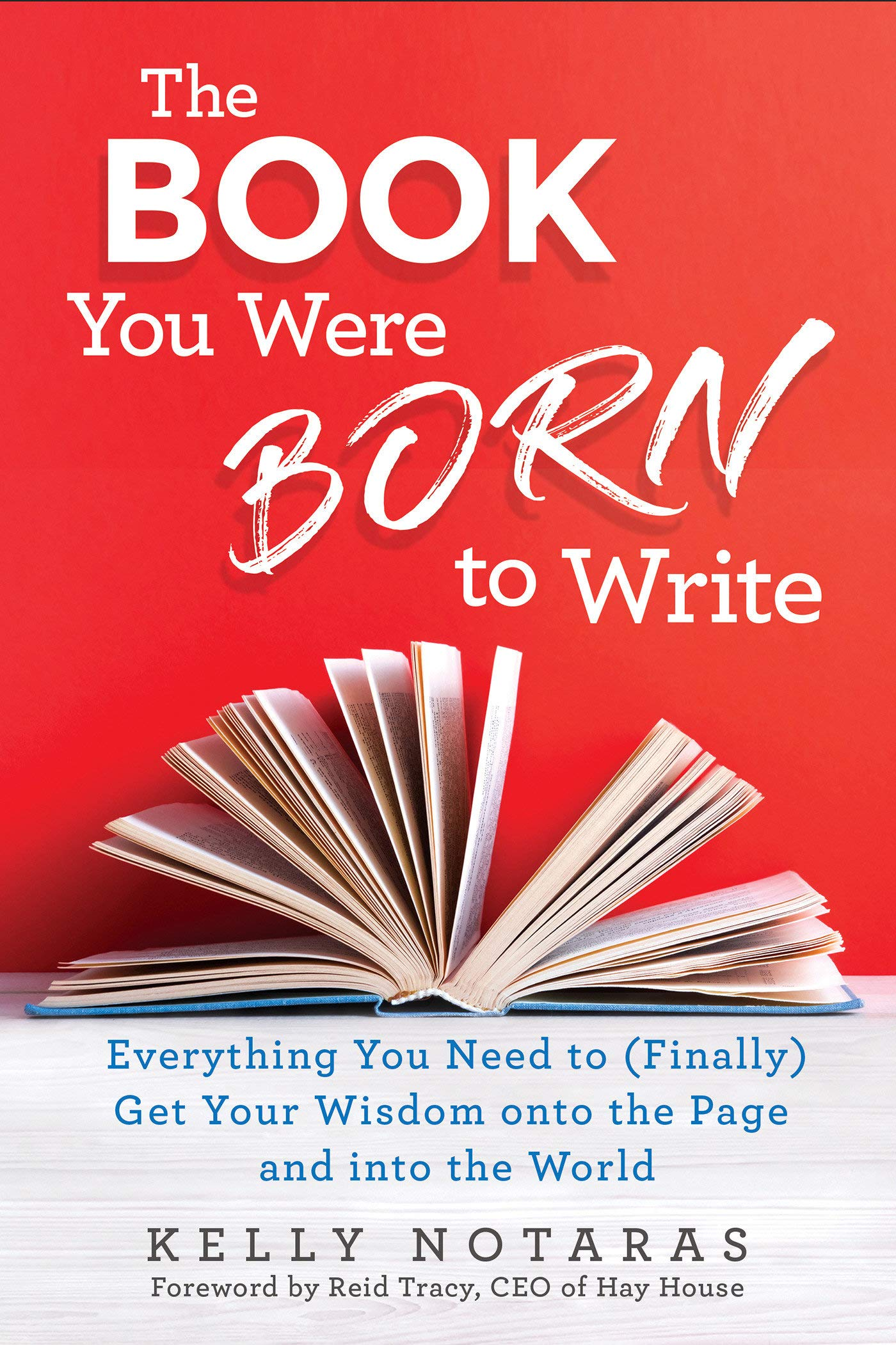Book You Were Born Write product image