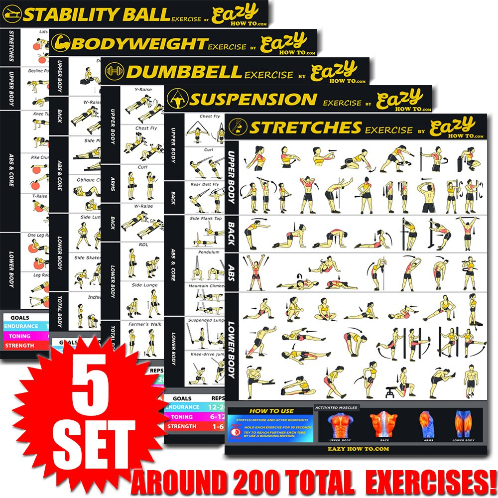 Eazy How To 5 Pack Bundle Exercise Workout Poster BIG 28 x 20'' Train Endurance, Tone, Build Strength & Muscle Home Gym Chart - Standard