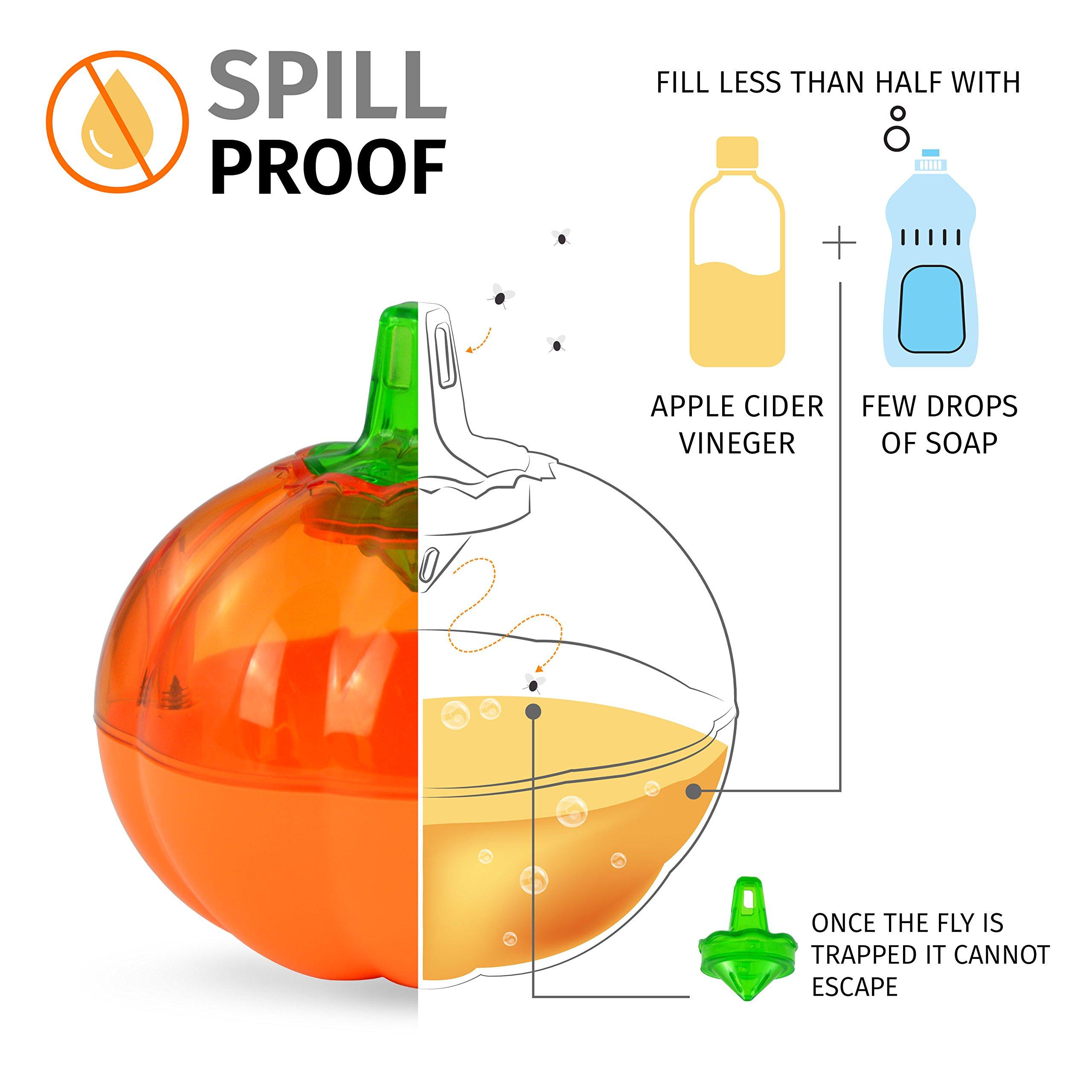 Aspectek Fruit Fly Trap, Pumpkin Shape, Pack of 2 by Aspectek (Image #4)