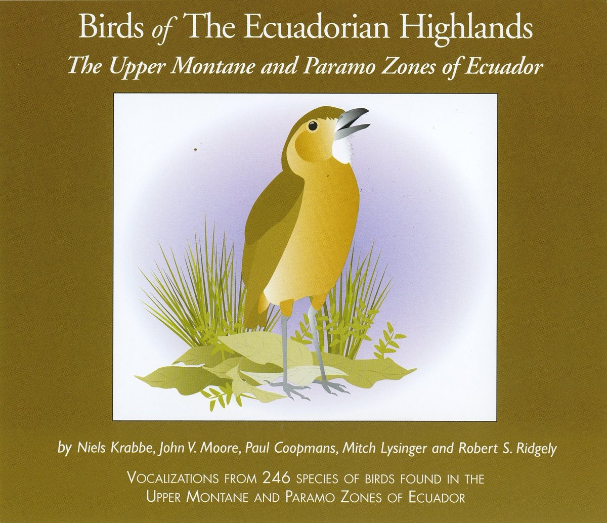 Birds of The Ecuadorian Highlands: The Upper Montane and Paramo Zones of Ecuador