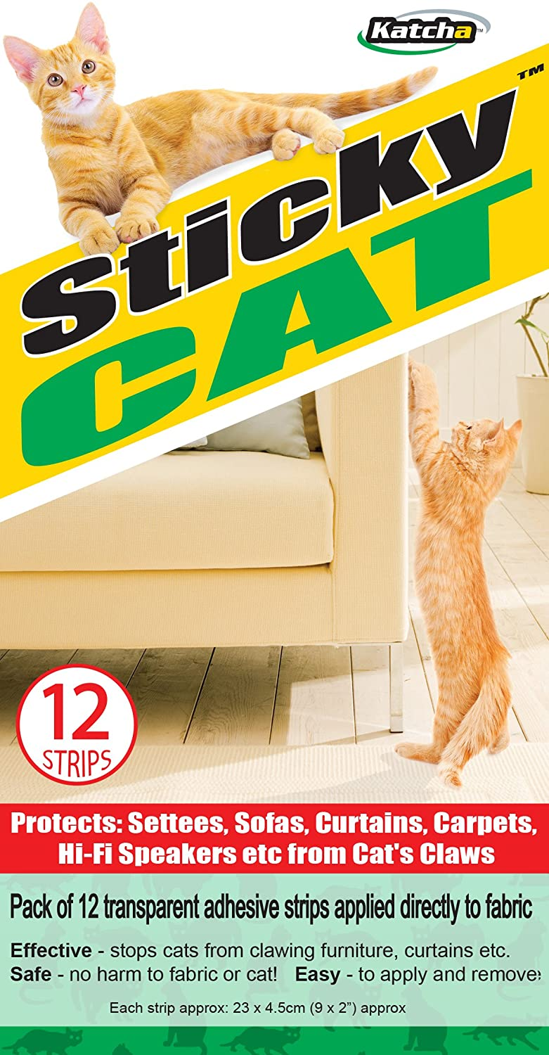 ago image couch cat a to from biting uploaded and completed how stop user months ways easy scratching