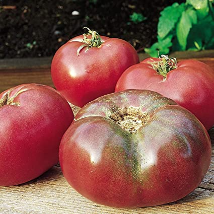 100 Cherokee Purple Heirloom Tomato Seeds by RDR Seeds