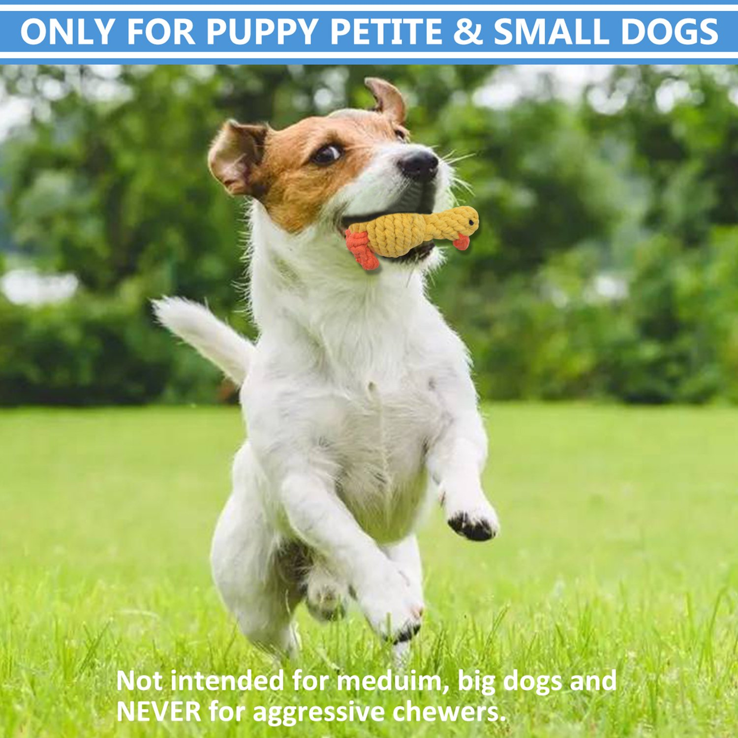 Dog Rope Toys Cute Animals Design, Cotton Puppy Toys for Small Dogs. Rope Dog Toy Set pack of 6 by TOYSBOOM (Image #5)