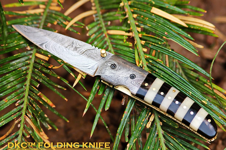 Knife Bumblebee: description, characteristics 18
