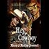 Hey, Cowboy (Bull Rider Series Book 2)