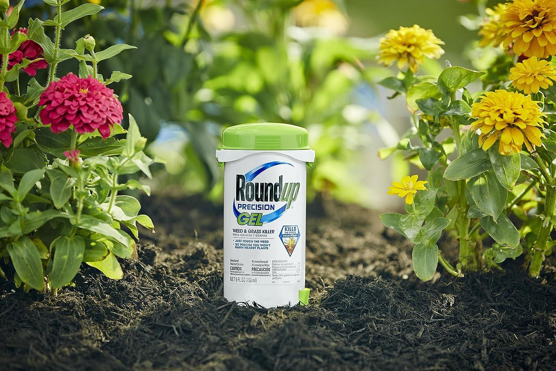 ve hbn for killer grass pinterest garden gardening best gardens beautiful vegetable images of able on