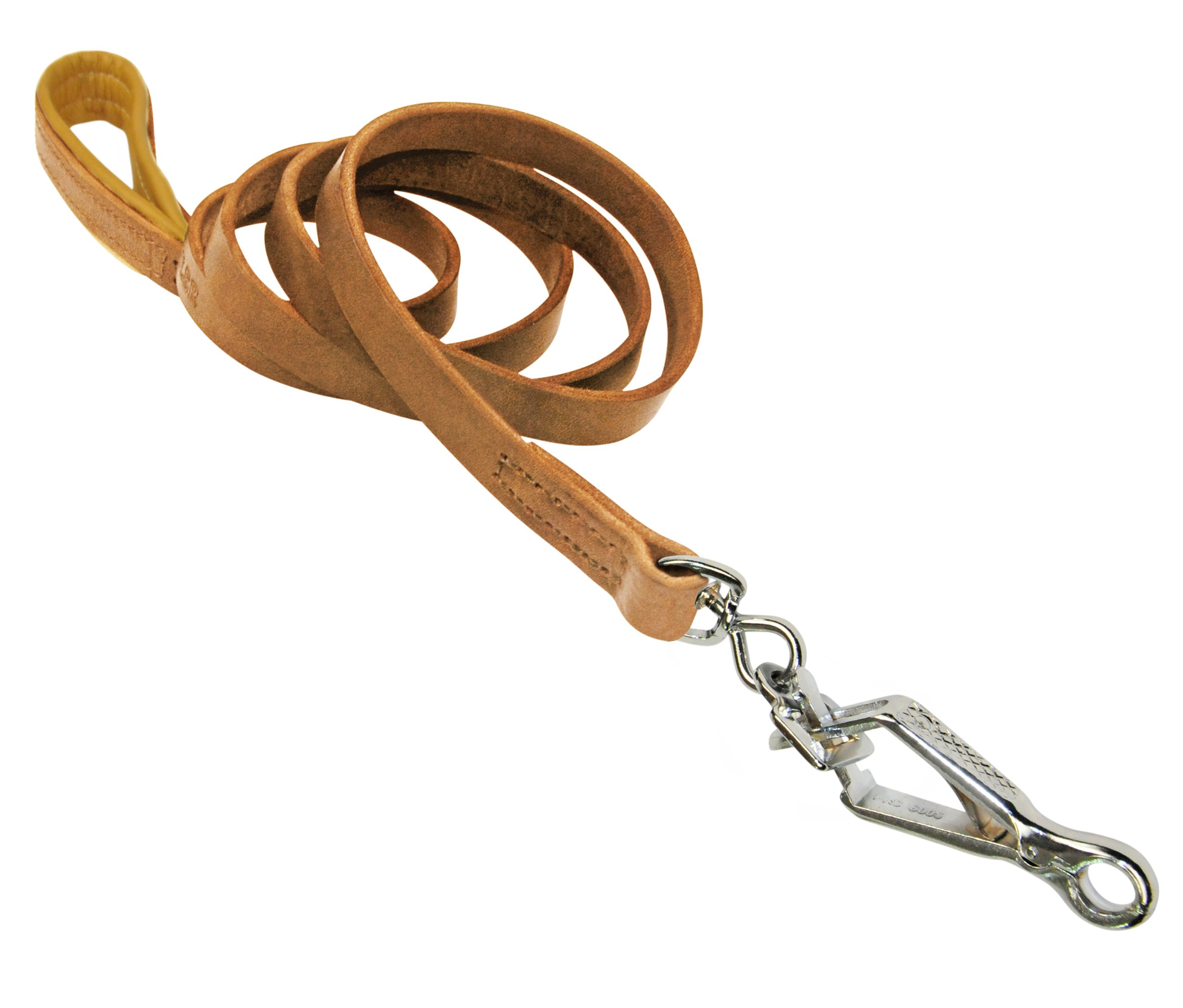 Dean & Tyler Soft Touch Dog Leash with Brown Nappa Padded Handle and Herm Sprenger Hardware, 4-Feet by 3/4-Inch, Tan