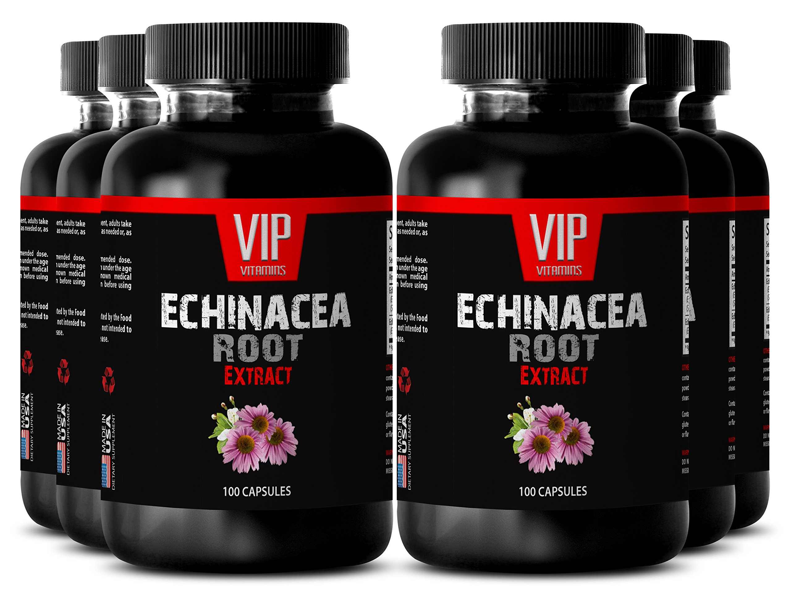 Eyesight supplements - ECHINACEA ROOT EXTRACT - Improve vision - 6 Bottles 600 Capsules by VIP VITAMINS