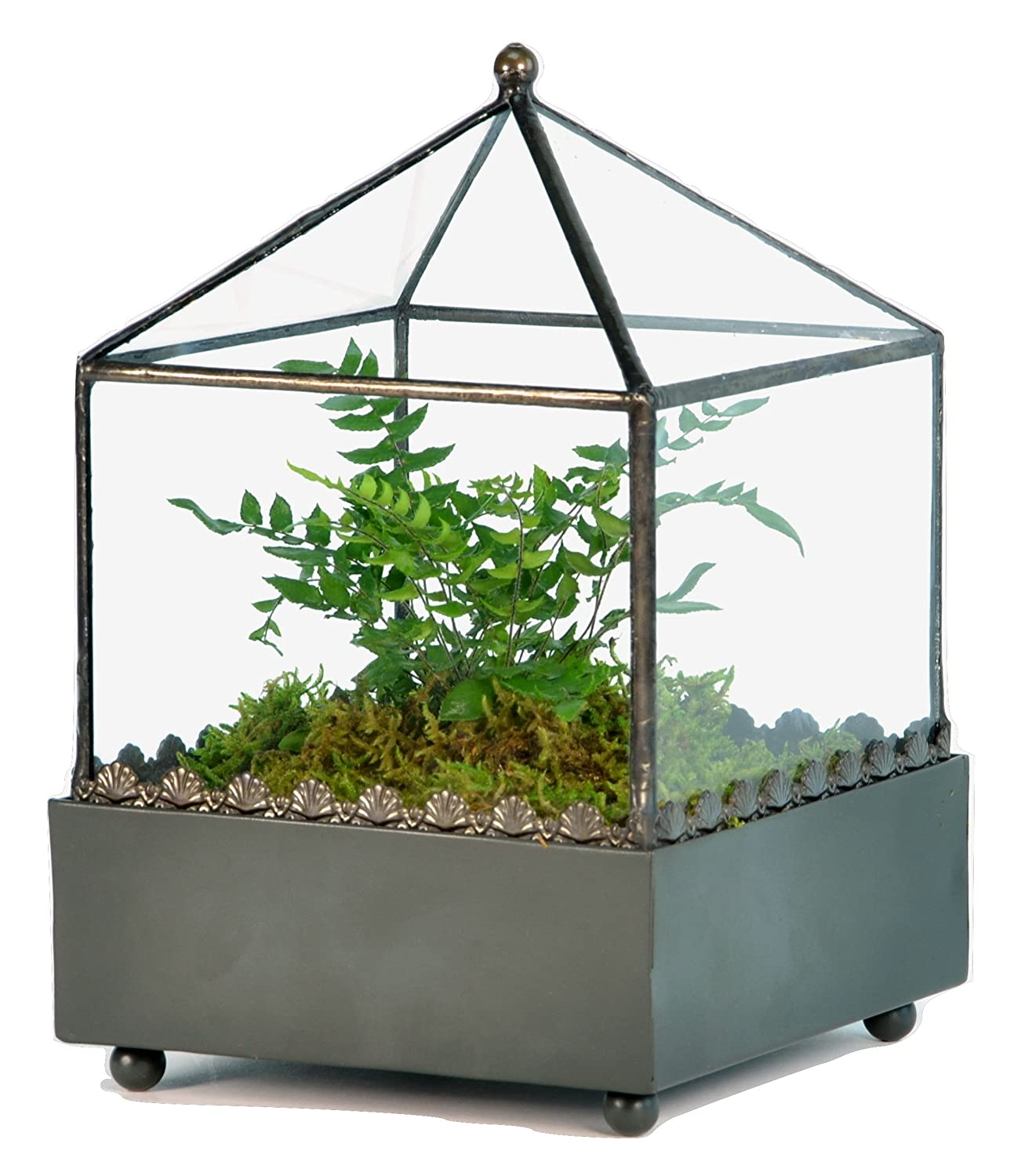 Amazon.com: H Potter Glass Terrarium Wardian Case   Handcrafted Tabletop  Square Planter Box   Modern Geometric Indoor Display Case   Succulent  Container ...